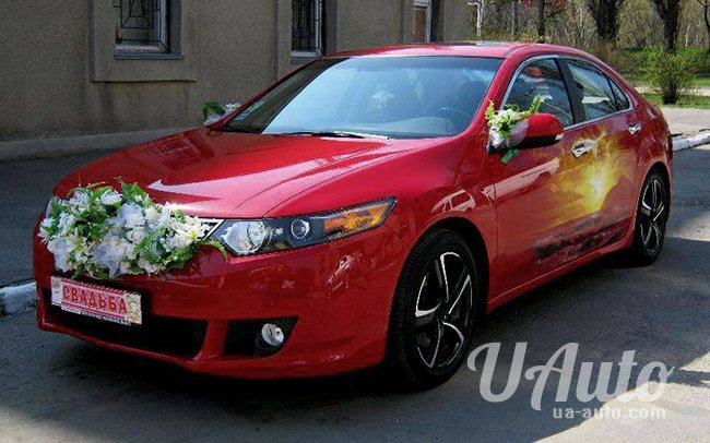 аренда авто Honda Accord в Киеве