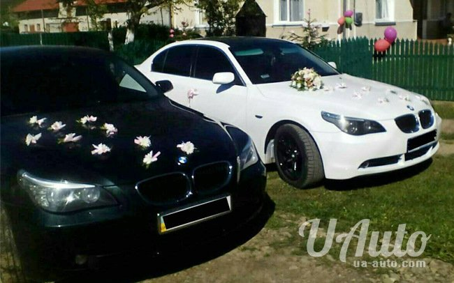 аренда авто BMW 5 в Киеве