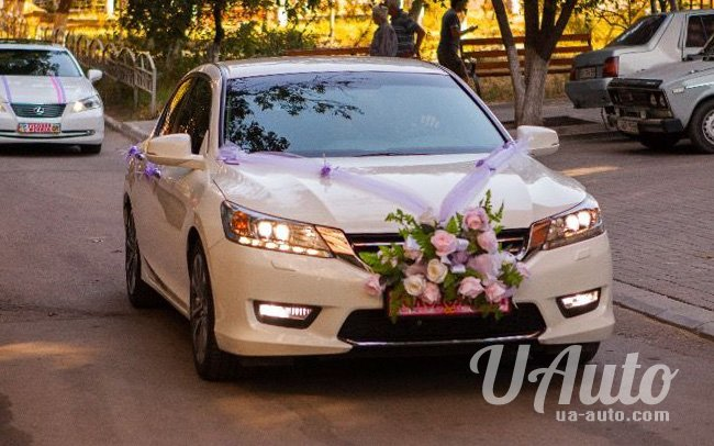 аренда авто Honda Accord New в Киеве