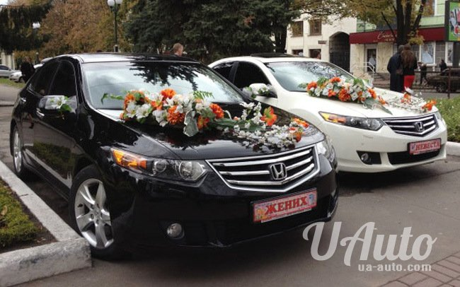 аренда авто Honda Accord на свадьбу