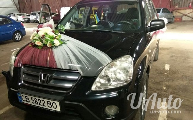 аренда авто Honda CR-V в Киеве