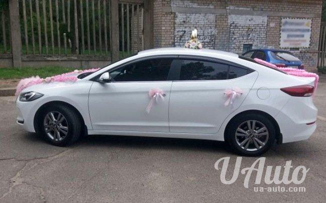 аренда авто Hyundai Elantra New в Киеве