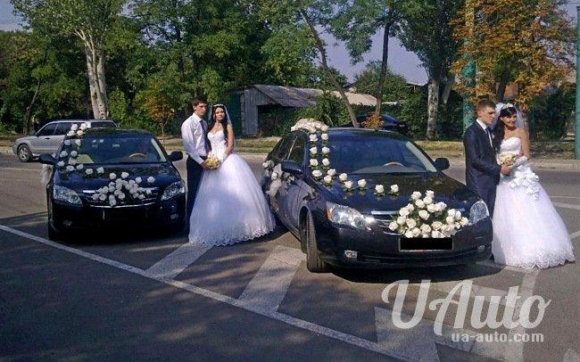 аренда авто Toyota Avalon в Киеве
