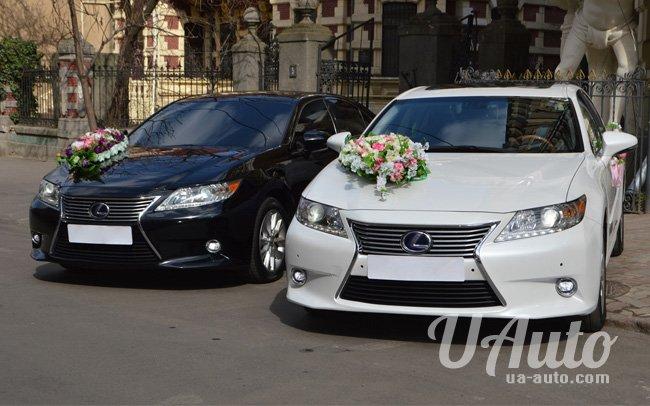 аренда авто Lexus ES300H в Киеве