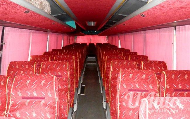 аренда авто Автобус Mercedes O404 в Киеве