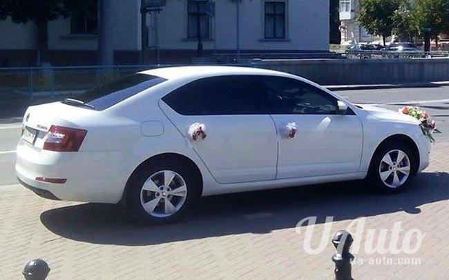 аренда авто Skoda Octavia A7 в Киеве